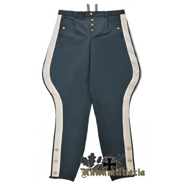 WW2 German Luftwaffe General M35 Breeches